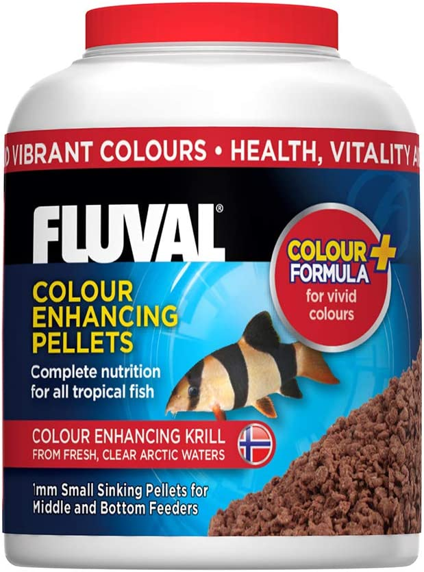 Fluval Color Enhancing Pellets Fish Food 90gm, 3.17-Ounce