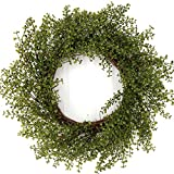Idyllic 22 Inch Spring Wreath Artificial Eucalyptus Leaf Garland Door Wreath on a Natural Twig Base (Spring Green)