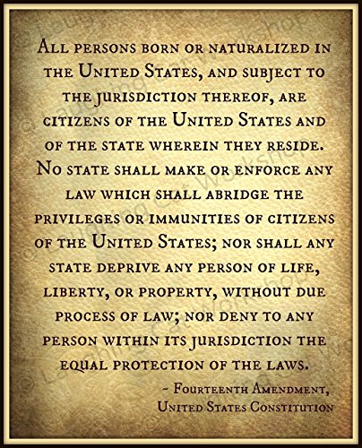 Fourteenth 14th Amendment United States Constitution President Trump Legal Laws American US USA art Life Liberty Property Equal Protection History Teachers poster Back to School Civil Rights art ()