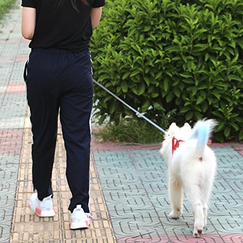 Retractable Dog Leash,Heavy Duty 16 Foot Extended Dog Walking Leash Adjustable with Break and Lock Button-Sturdy Nylon Ribbon Cord,Tangle Free,Suitable for Small,Medium and Large Dogs Up to 110 Lbs by PetsKing (Image #6)