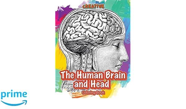 The Human Brain Coloring Book by Marian C. Diamond /(English ...