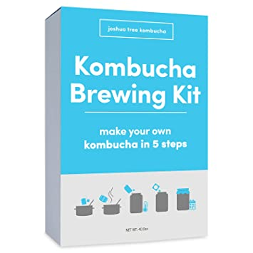 Review - Kombucha Scoby with