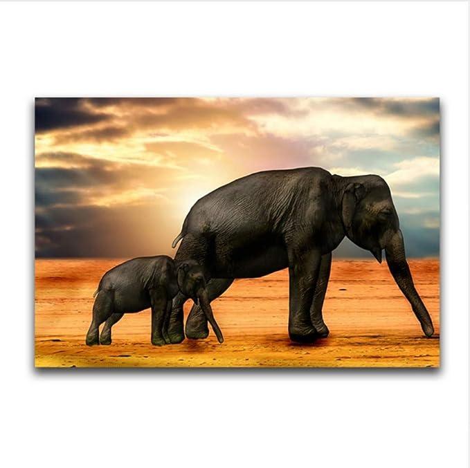 WACYDSD Pintura por Números Elefante Puesta De Sol Pintura Al Óleo ...