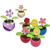 Toysmith Solar Flower Toy