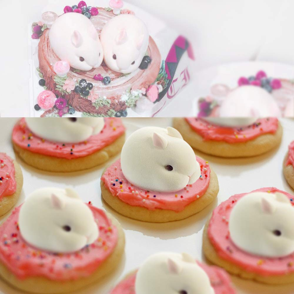 Conejo 3D Molde de silicona para Horneando tartas, galletas, dulces, cubitos de hielo, hecho a mano, molde de chocolate Forma de Conejito (rosa): Amazon.es: ...