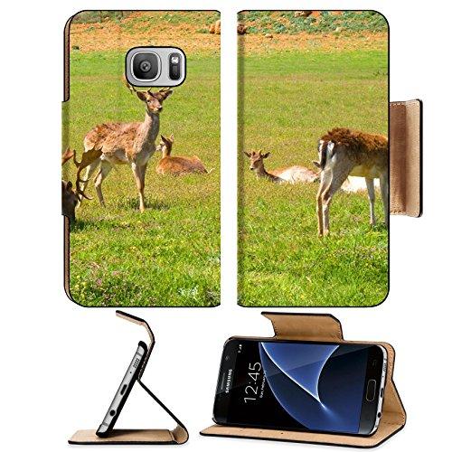 Liili Premium Samsung Galaxy S7 Flip Pu Leather Wallet Case IMAGE ID: 6791625 Domestica deer on the fresh spring - Gazel Glasses
