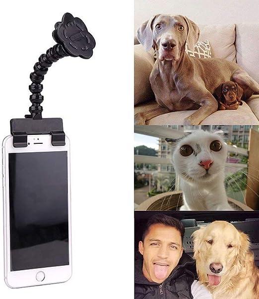 Porlik Best Pet Selfie Stick, camara para mascota, perro gato ...
