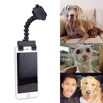 porlik Best Pet Selfie Stick, Camara para Mascota, Perro Gato Tomar Fotos, Juguete