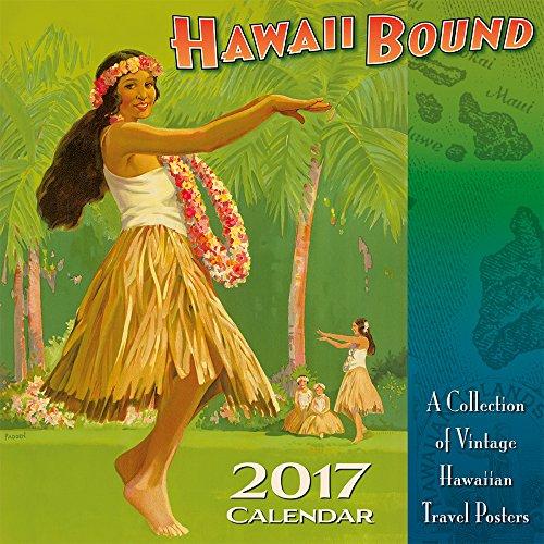 Hawaii 2017 Deluxe Wall Calendar product image