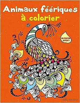 Coloriage Animaux Feeriques.Animaux Feeriques A Colorier Amazon Fr Celine Pottier Livres