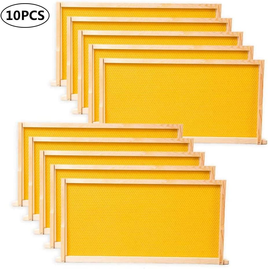 Bettying - 10 piezas Hive Frames Waxed Foundation con marco Beehive Kit Wax Coated Bee abejas Coated Foundation Sheet Imkerei-Werkzeuge