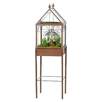 H Potter Large Glass Terrarium Succulent Planter Wardian Case for Plants: Garden & Outdoor