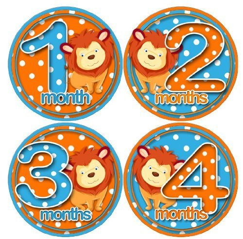 LITTLE LIONS 1-12 Month Baby Monthly One Piece Stickers Baby Shower Gift Photo Shower Stickers EasySells