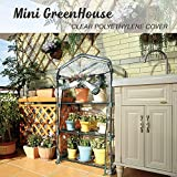 Worth MINI GREENHOUSE (ALL NEW) – NEW METAL GREEN VERSION with 3 tier COLLAPSABLE shelves – Best Greenhouse with ROLL UP ZIPPER DOOR – 3 Year GUARANTEE