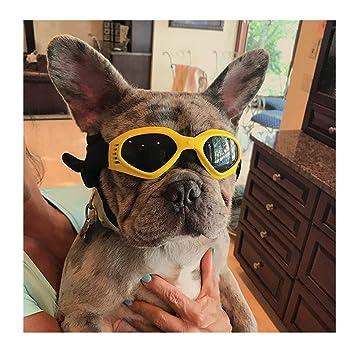 DLDL Gafas de Sol para Perros - Gafas para Mascotas pequeñas ...