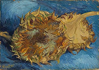 Amazon Com Wieco Art Sunflowers Floral Giclee Canvas Prints Wall