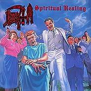 Spiritual Healing [Disco de Vinil]