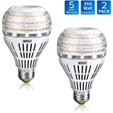 SANSI 27W (250 Watt Equivalent) A21 Omni-directional Ceramic LED Light Bulbs, 3500 Lumens, 3000K Soft Warm White Light, E26 Medium Screw Base Floodlight Bulb, Home Lighting, Non-dimmable (2 Pack)