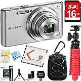 Sony DSC-W830 Cyber-shot 20.1MP Digital Camera (Silver) + 16GB Memory Card & Accessory Bundle