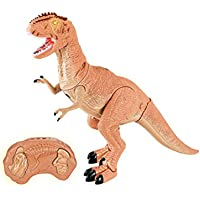 Liberty Imports Dino Planet Remote Control R/C Walking Dinosaur Toy with Shaking Head, Light Up Eyes and Sounds (T-Rex)