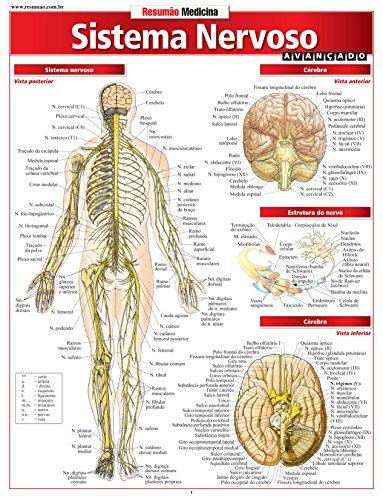 Sistema Nervoso. Avançado