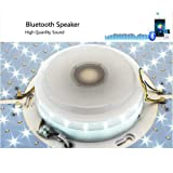 19.7 Inch ceiling light dimmable with remote
