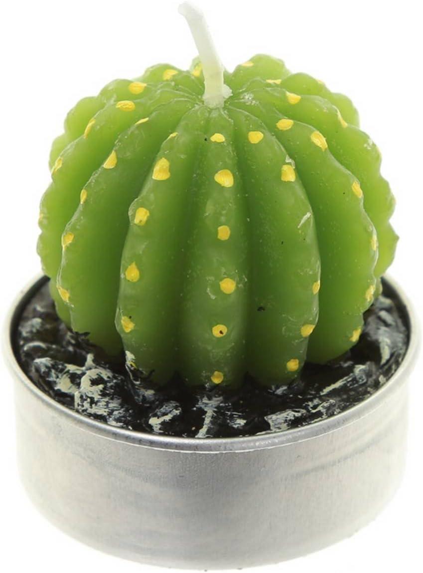 Lot de 6 Bougies Cactus Unique