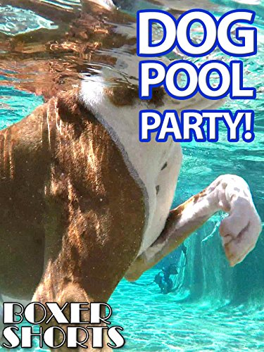 Dog Pool Party ()