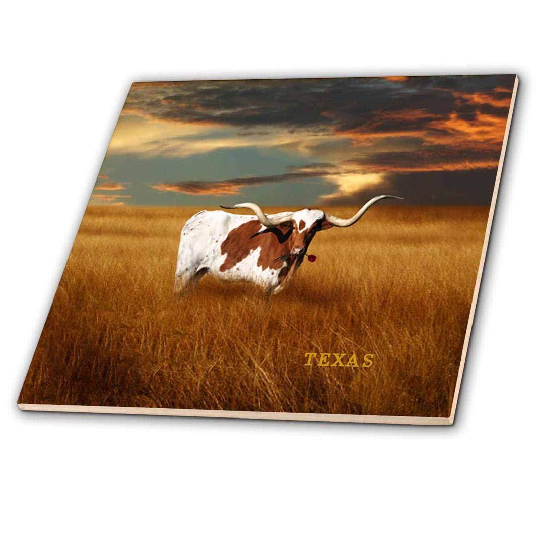 3dRose ct/_62229/_3 A Texas Longhorn-Ceramic Tile 8-Inch