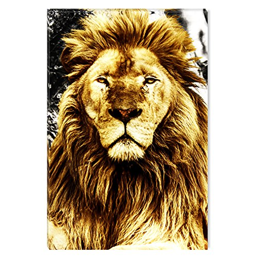 Startonight Canvas Wall Art Supreme Animal Jungle Lion, Dual View Surprise Artwork Modern Framed Ready to Hang Wall Art 100% Original Art Painting 31.5 x 47.2 (Jazz Festival Poster Card)
