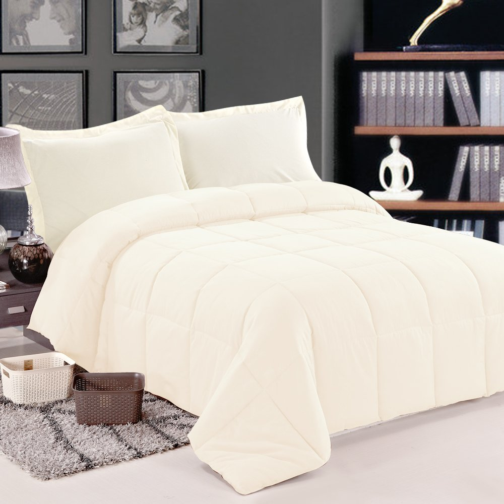 NTBAY Multi Color Down Comforter Queen, Beige