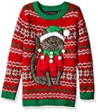 Blizzard Bay Boys Ugly Christmas Sweater Cat, Green Combo, S 8/10