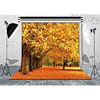 LB 10X10ft The Golden Maple Leaves of the World Fall Scenery Vinyl Photo Backdrop Customized Photography Backdrop Background Studio Props M-151