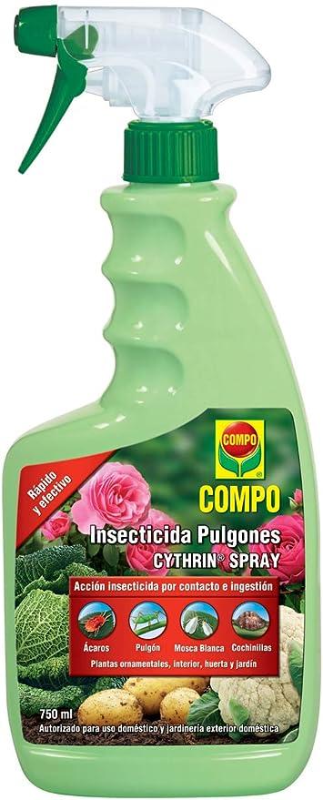Compo Cytrhin Spray Insecticida Pulgón Para Plantas Ornamentales De Interior Huerta Y Jardín Envase Pulverizador 750 Ml Amazon Es Jardín