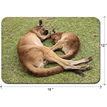 Liili Large Mouse Pad XL Extended Non-Slip Rubber Extra Large Gaming Mousepad, 3mm thick Desk Mat 18x12 Inch IMAGE ID: 28979989 Sleeping mother and her joey Ballarat Wildlife Park Victoria Australia