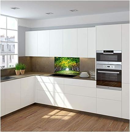 CustomGlass Panel de Vidrio antisalpicaduras para frentes de Cocina Gran Variedad de diseños Que se adaptan a Cualquier Estilo Decorativo backsplash Modelo Seil: Amazon.es: Hogar