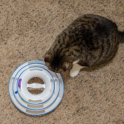 Buy bergan turbo scratcher cat toy, colors may vary