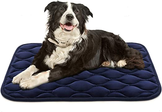 Dog Crate Beds Washable Online Shopping