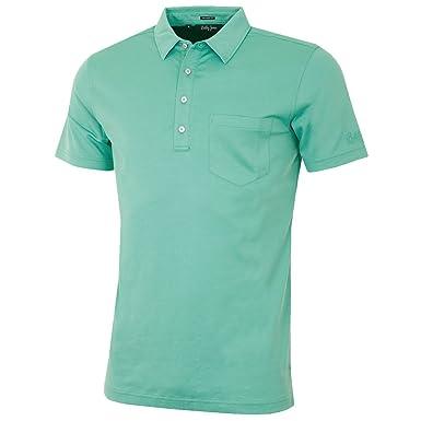 93760ed83c41 Bobby Jones Mens Supreme Cotton Vintage Solid Polo Shirt - Celery - S