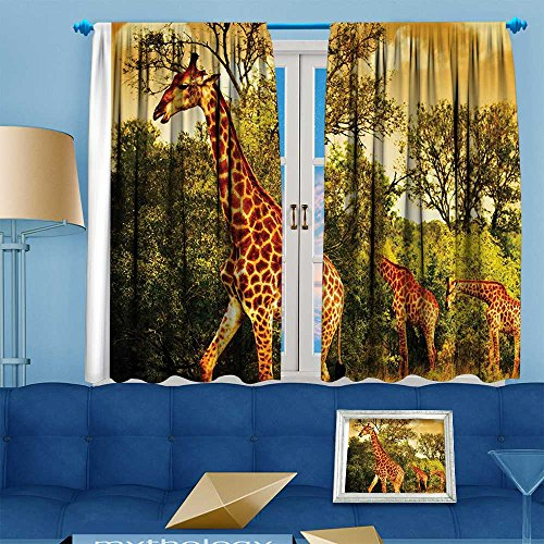 Jiahonghome Whale Decor Collection,Safari Giraffe and Animals for Bathroomatis Kids Teens Wi,Window Treatments for Bedroom Curtain 2 Panels Set,108