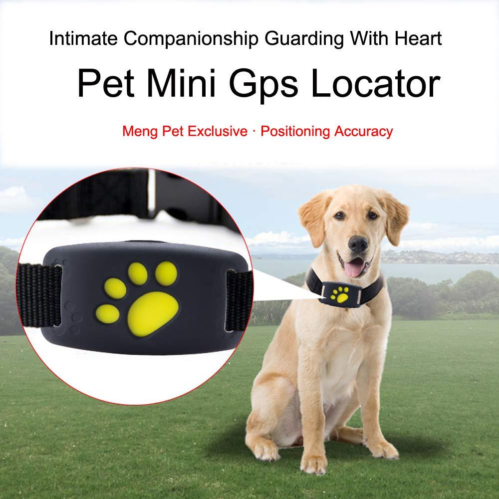 Amazon.com: Rastreador GPS para perro, ligero y resistente ...