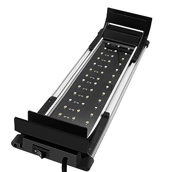 Luces para pecera, de Mpanda; luces LED de dos colores (azul y blanco), cuatro posiciones de tornillo aptas: Amazon.es: Productos para mascotas