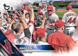 Los Angeles Angels of Anaheim 2016 Topps MLB Baseball Regular Issue 22 Card Team Set with Mike Trout, Albert Pujols Plus