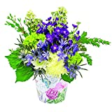 eFlowy - Romance Vase Floral Arrangement