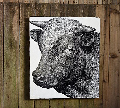 Sir Bull - Medium: 30x36'' - Salvaged Wood Wall Decor - Handmade in Sonoma Valley, CA - Perfect for Home or Office - Rue Sonoma Original Design by Rue Sonoma