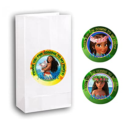 Amazon 12 Moana Birthday Party Favor Bags With Stickers 2