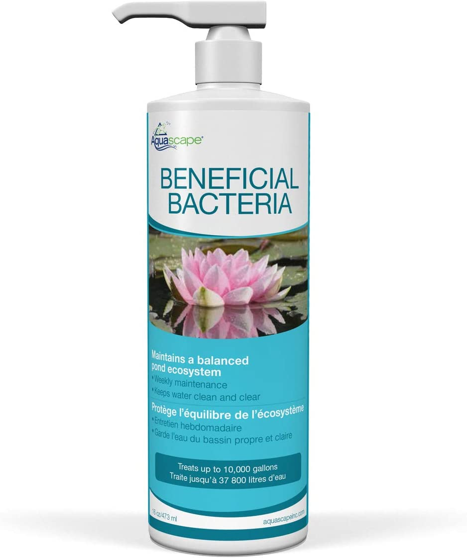Aquascape Liquid Beneficial Bacteria for Pond and Water Features, 16-Ounce, Easy Pump Top Bottle | 98887