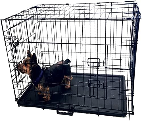 KennelMaster Folding Kennel Crate with Divider, 24 L x 17 W x 19 H