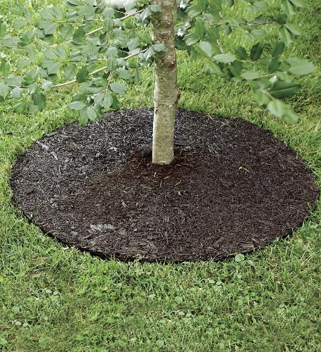 Rubber Ring Tree Mulch - Plow & Hearth Permanent Rubber Mulch Tree Ring - Natural Wood Look - Cut to Fit - Yard and Garden Landscape Border - 36'' Diam