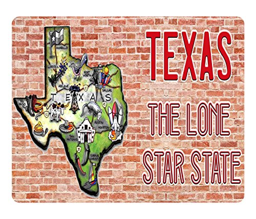 (BleuReign(TM) Detailed Texas Map on Brick Background Square Refrigerator Fridge Magnet)